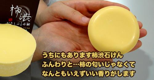bn_kakishibu.jpg